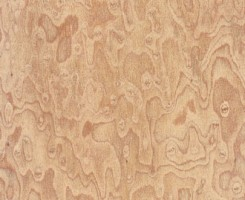 Birdseye Brandied Peach Composite (FSC)